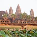 カンボジア/アンコールワット ハスの花と夕暮れのアンコールワット。 遺跡には日没までしかいられない。グズグズしていたら警備員に笛を吹かれて追い立てられました。