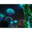 #ガーデンズバイザベイ #マリーナベイサンズ #夜景 #イルミネーション #シンガポール #201909