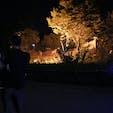 #石川動物園#nightzoo