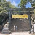 奥社まで行って階段1300段登りきった!  奥社でしか買えない天狗さんのお守りもありました  #香川 #金毘羅宮 #こんぴらさん #琴平