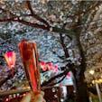 #目黒川 #目黒 #東京 2019年3月  お花見にぴったりな苺の入ったロゼワイン🍓🍷