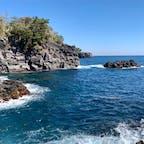 #城ヶ崎海岸 #伊豆 #静岡 2019年3月  端から端まで寄り道して、コースを変えて散策🚶♀️🚶♂️ 想像よりずっと海が青くて綺麗だった!✨