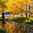 ヨーロッパの秋の風景を感じさせるトーベ・ヤンソンあけぼの子どもの森公園