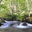 夏の終わりの頃の奥入瀬です。 清流を眺めていると少し暑さも楽になります。