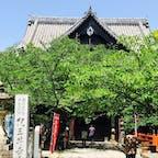西国三十三観音の2番、紀三井寺に行ってきました。 急な階段を登った先にあります。 今年は創草1300年という事で、特別な御朱印がいただけます。