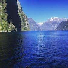 ニュージーランドのミルフォードサウンド。素晴らしい景色と岩場で日向ぼっこするペンギンやアザラシの姿が印象的でした。