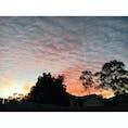 📍Brisbane Australia  オーストラリアの好きなところ① 空が綺麗 #australia #brisbane #sunset