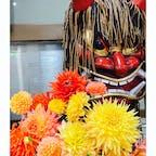 秋田空港にて。 ナマハゲと旬のダリアの花にお見送りされて、帰宅しました(^^)
