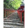 #貴船神社 #京都 #水占い #201508