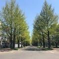 北海道 北海道大学