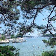 #松島湾 #松島 #宮城 2019年7月  毎年来ているけど松島海岸側から見るのは初めて🏝 観光船を使って大好きな塩竈へ...🚤