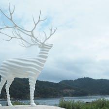 Reborn-Art Festival 2019 荻野浜エリアより。迷い鹿 WhiteDear。