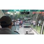 上海動物園カオスだった🐼