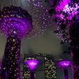 シンガポール ガーデンズ・バイ・ザ・ベイ 昼間も良いけど夜がオススメ