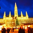 オーストリア🇦🇹ウィーン 市庁舎前クリスマスマーケット🎄 ドイツは11月末からですが、ウィーンはいち早く始まります!