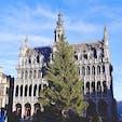ベルギー ブリュッセル グラン・プラス クリスマス