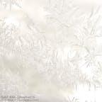 旭岳ロープウェイの姿見駅より、空気中の水蒸気が凍ってできた窓霜。霜も雪の結晶も1つとして同じ形のものはできないそうです。#北海道 #旭岳ロープウェイ