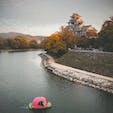 川から桃が流れてきた(笑) 桃太郎の世界観がすごい(^^)!  岡山城と桃ボート