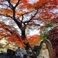 茨城 永源寺 もみじはもちろん 石像も楽しめるお寺