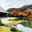 久しぶりの京都🍁