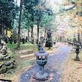 永平寺に初訪問。お勤めのお経がよかったです。  写真は、外にある寂光院。生い茂る木々と苔のなかに歴代住職やゆかりのあるのお墓などが佇んでいます。落ち葉はほとんどが紅葉だったので紅葉の時期にもぜひ訪れたいです。