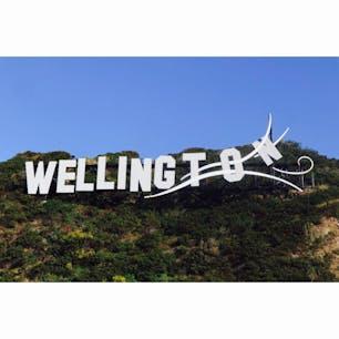 ニュージーランド ウェリントン から。  windy willy(ウィンディーウィリー)の愛称があるほど風の強い町のモニュメント?風に吹かれてます🌬