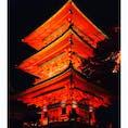 清水寺のライトアップ。昼間は激混みだけど平日夜は意外とゆっくりできるもんなのね〜。