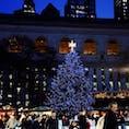 New York / Manhattan Bryant Park ニューヨーク公共図書館を背景に、青く輝くブライアントパークのクリスマスツリー。
