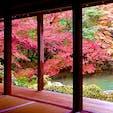 京都 蓮華寺
