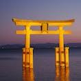 白髭神社  滋賀の厳島神社 湖に浮かぶ鳥居がとっても綺麗。  #滋賀#高島#白髭神社