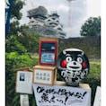 熊本地震からの復旧作業が進む熊本城。 大天守の外観復旧作業が終わり勇姿を拝むことができます。 現在は小天守に足場が組まれ復旧作業中。 加藤神社より望む #日本100名城 #くまもん