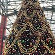 ディズニーランド クリスマス一色です