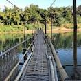 ラオス/ルアンパパーン バンブーブリッジ メコン川に架かる有料橋 #LuangPrabang #MekongRiver
