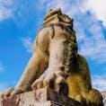 清水寺 清水寺にいた狛犬。 下から見ると迫力が凄い。  #京都府 #清水寺
