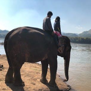 ラオス ルアンパバーン プロのゾウ使いの方と、メコン川に入っていきます💦
