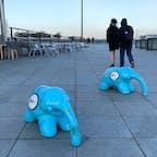 横浜市 みなとみらい 象の鼻パーク