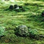 京都大原三千院 苔むしたわらべ地蔵