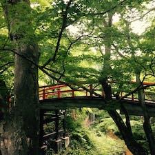 伊香保/群馬 鉄の匂いがきつーい温泉でした🤖 森林の中の温泉って感じが良かったです