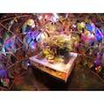 奈良県奈良市の商業施設ミ・ナーラの4Fにある『金魚ミュージアム』🐟  金魚✖️アート という斬新なアイデアが素晴らしい世界観を生み出してます。  入場料は1000円でした‼︎  #奈良 #金魚 #アート #金魚ミュージアム