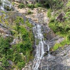 #キュランダ観光鉄道 #ケアンズ #オーストラリア  2020年1月  カーブに気を取られて滝を見逃さないよう注意😉😉