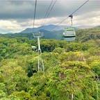 #スカイレール #キュランダ #オーストラリア  2020年1月  有名な #バロン滝 も凄かったけど 一体何mあるの?!っていう木々に何より感動した🌴  長いと思ってた1時間があっという間😊😊