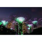 シンガポール (ガーデンズ・バイ・ザ・ベイ) 〜スーパーツリーグローブ〜