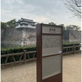 大阪城の西外堀  大阪城の周辺を走る「城ラン」 初めて走りました。 走っている人が多い。 なんかうれしくなるのは、なぜだろう(^^)