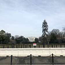 Feb.3.2019 Washington D.C.