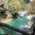 高知 安居渓谷に行く途中 仁淀ブルーが綺麗  余能橋 吊り橋から