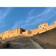 2020年1月24日 #インド #アンベール城 ぞうさんに乗りながら向かうアンベール城 ☻