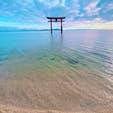 白髭神社⛩  琵琶湖の水も綺麗でした‼️