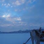 #フィンランド  #サーリセルカ  トナカイのお尻が可愛かった🥰