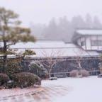 和歌山 高野山 増幅院、明泉院