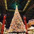 ディズニー・クリスマス Tokyo Disney Land 2019.12.10